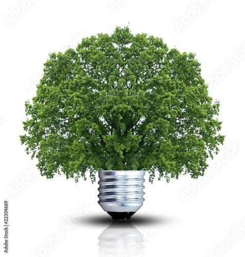 Grüne Energie kreativ umgesetzt
