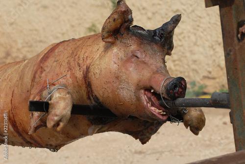 cochon a la broche sanglier