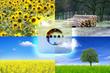 Grüner Strom aus Biomasse
