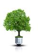Umweltschutz bildlich dargestellt