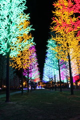 LED tree rows