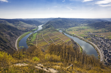 Mosel valley near Bremm