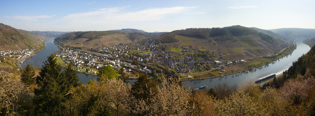 Mosel Valley panorama