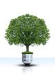 Grüne Energie Konzept