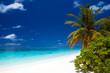 Exotischer Strand