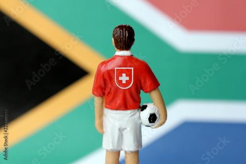 Schweiz in Südafrika