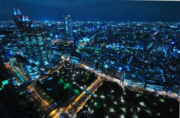 Night view from Tokyo Metro Govermeng Building