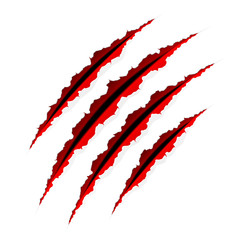 Claws scratches. Vector.