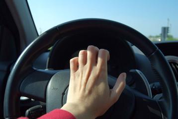 guidatore nervoso