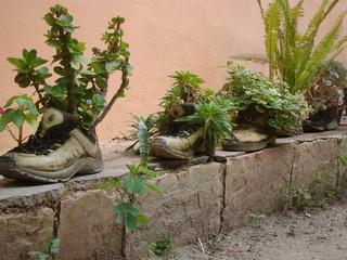 macetas de botas