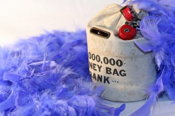 Money bag with blue feathers