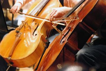Streichinstrument © blumenblueten