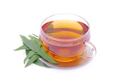Tee Spitzwegerich - tea ribwort plantain 04 poster