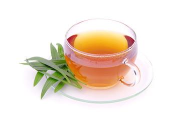 Tee Spitzwegerich - tea ribwort plantain 01