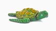 Creeping Turtle