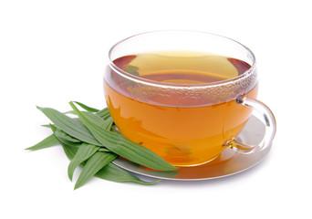 Tee Spitzwegerich - tea ribwort plantain 06
