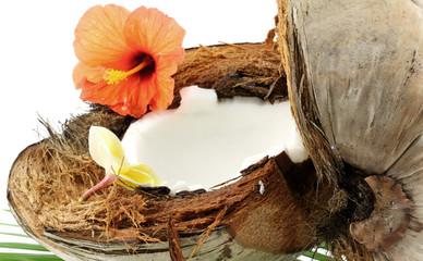 noix de coco ouverte, fond blanc