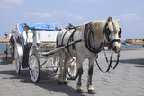 Horse cart for tourists in Xania, Crete