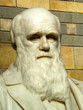 Statue of Charles Darwin1809-82