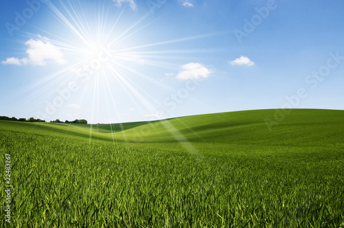 Sunshine field