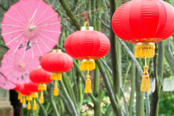 pink umbrellas and chinese lanterns (2)