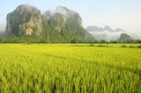 Fototapete Dorf am meer - Tropisch - Allgemein