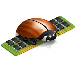 RAM Bug