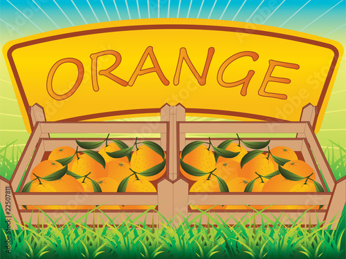 Orange crate vector