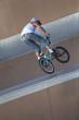 Roller, bike et skate au skate-park