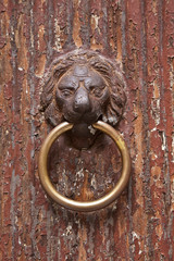 Old Lion Head Door Knocker, Venice, Italy