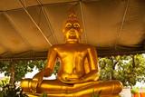 lord buddha poster
