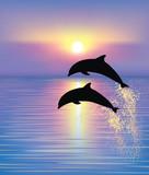 Fototapety Dolphins.