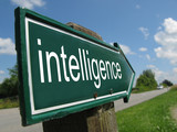 INTELLIGENCE road sign poster