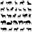 deer and goats silhouettes set