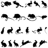 Collection of rodents silhouettes poster