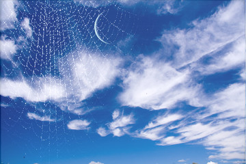 Web and moon