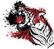 Quadro tigerrr