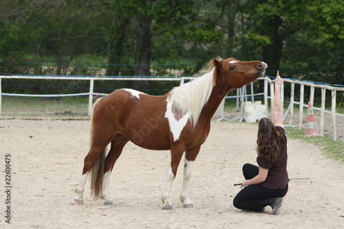Staande foto Paardrijden Sourire sur demande