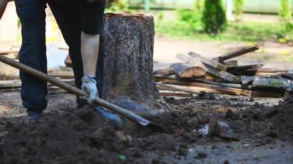 Man diging stump. Fast motion effect.