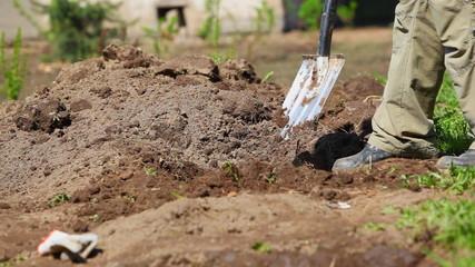 Man diging ground in garden