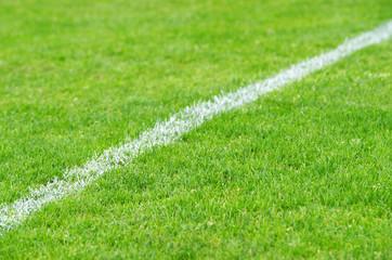 Fußball Seitenlinie diagonal - Soccer Grass
