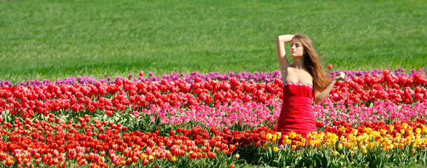 young beautiful girl in tulip field
