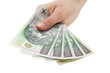 Polish money. Clipping path included.