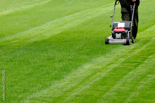Person cutting grass with mower