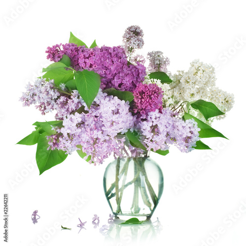 Foto op Plexiglas Lilac Beautiful Bunch of Lilac in the Vase