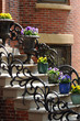 Flower Pots on Steps of Boston South End Apartment