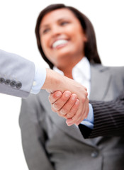 Cheerful businesswoman looking at her partners shaking hands