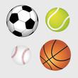 Palle sportive