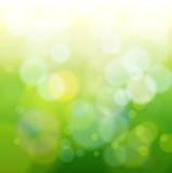 Fototapety green bokeh abstract light background. Vector illustration