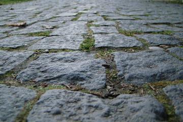 Life's Journey Brick Path